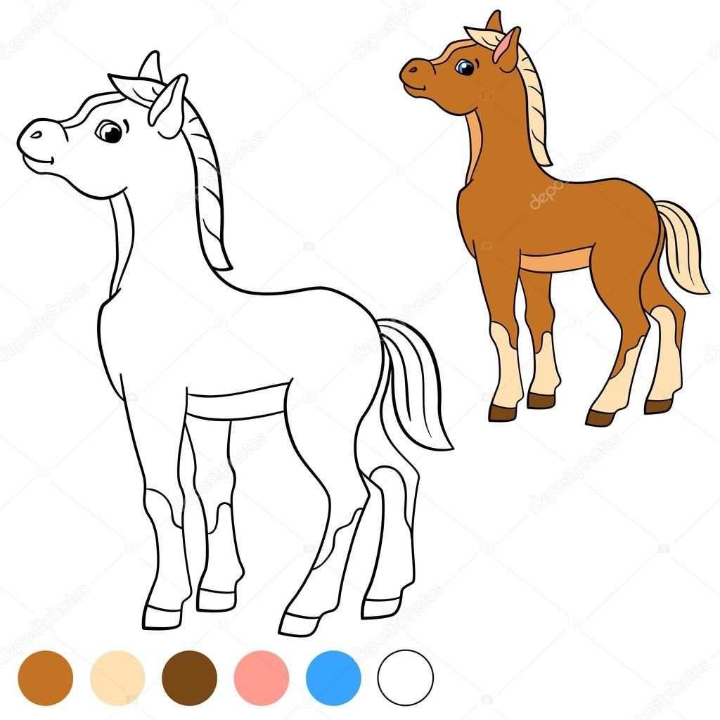 Kleurplaat Kleur Me Paard Kleine Schattige Veulen Stockvector