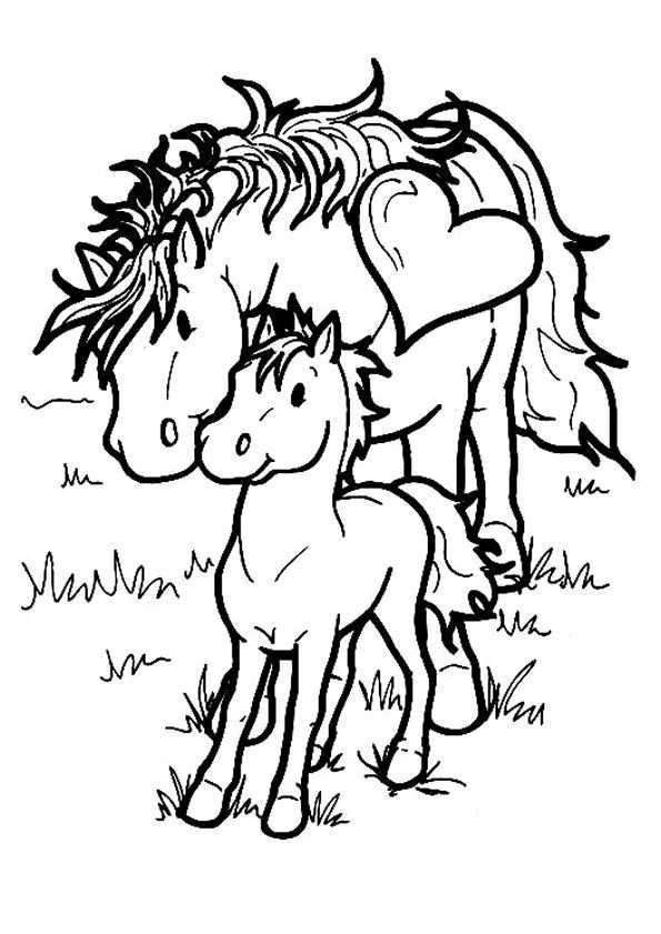 Quatang Gallery- Kleurplaat Paarden Tekening