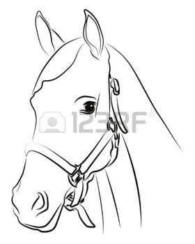 Wit Paard 3a Paard Hoofd Silhouet Op Wit Wordt Ge C3 Afsoleerd