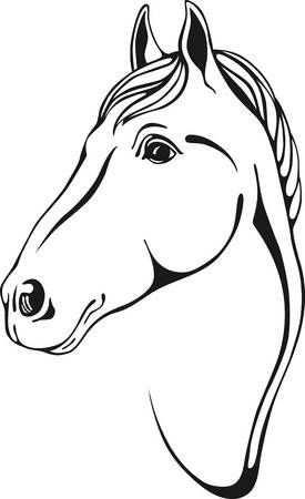 Stock Photo Paard Tekeningen Paard Silhouet Tatoeage Paard