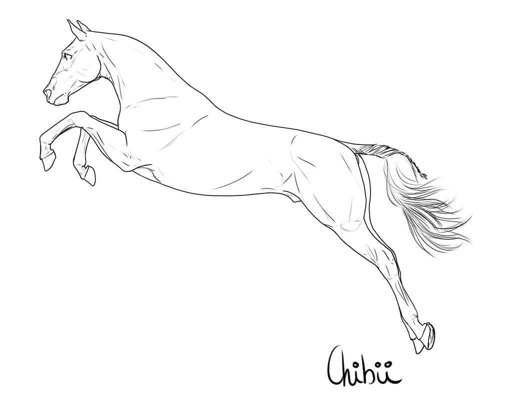 Free Lineart By Bh Stables Paard Tekeningen Hoe Te Tekenen
