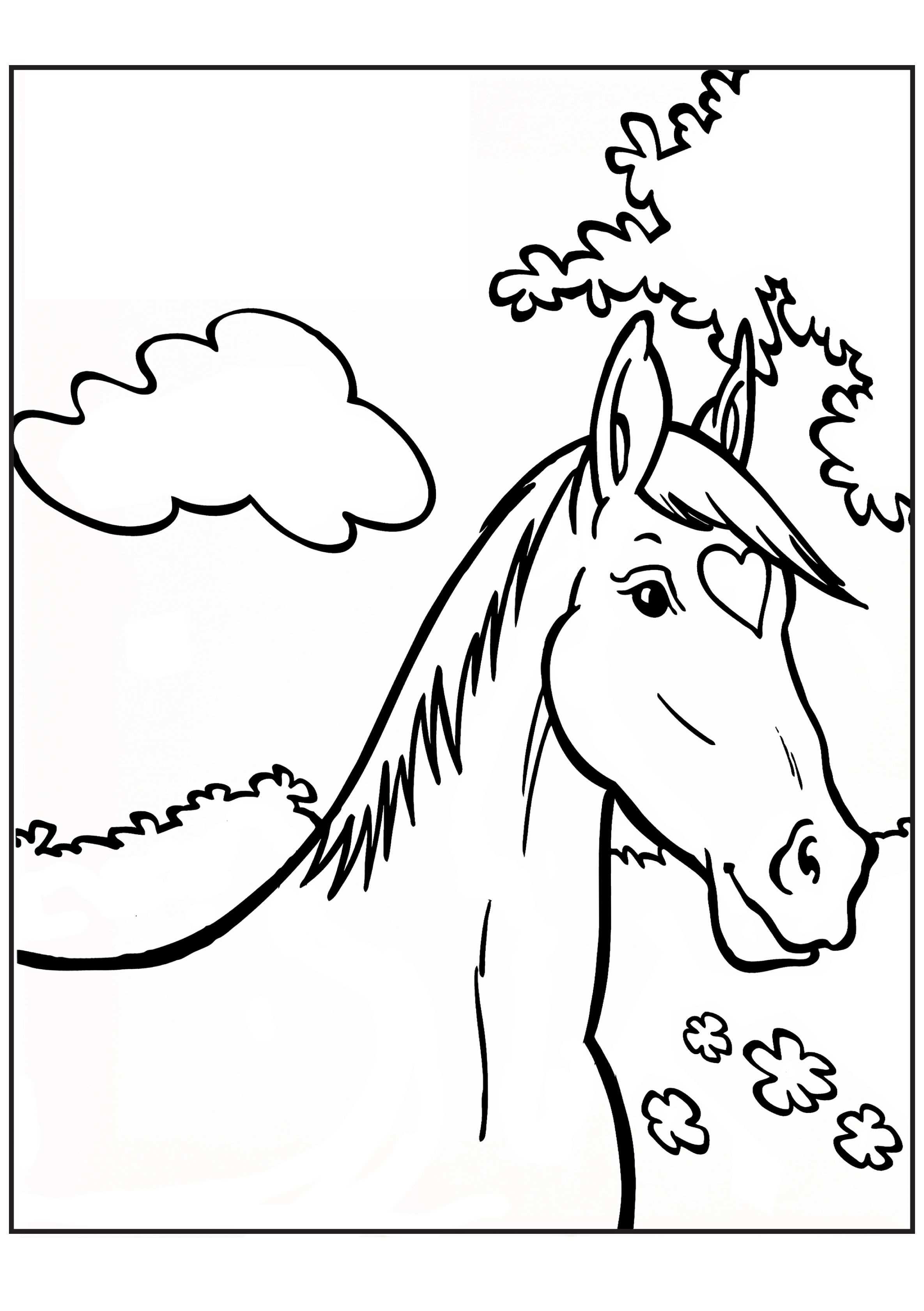Kleurplaat Paard Kleurplaten Paarden Paardenhoofd