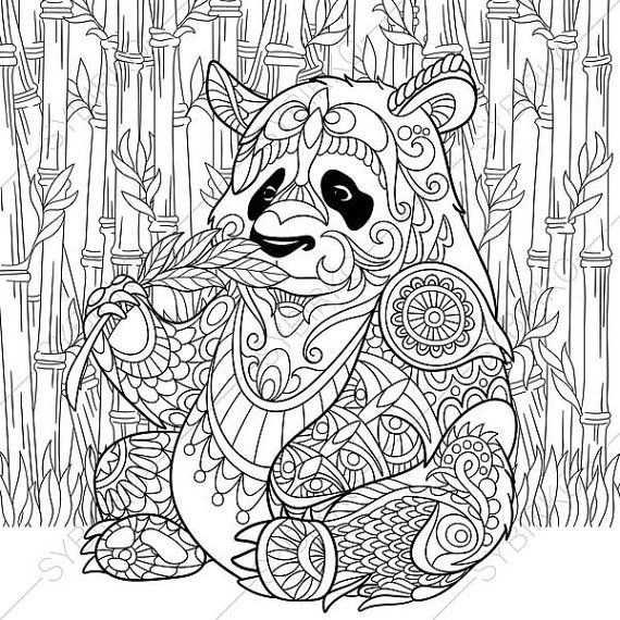 Panda Bear Coloring Page Adult Coloring By Coloringpageexpress