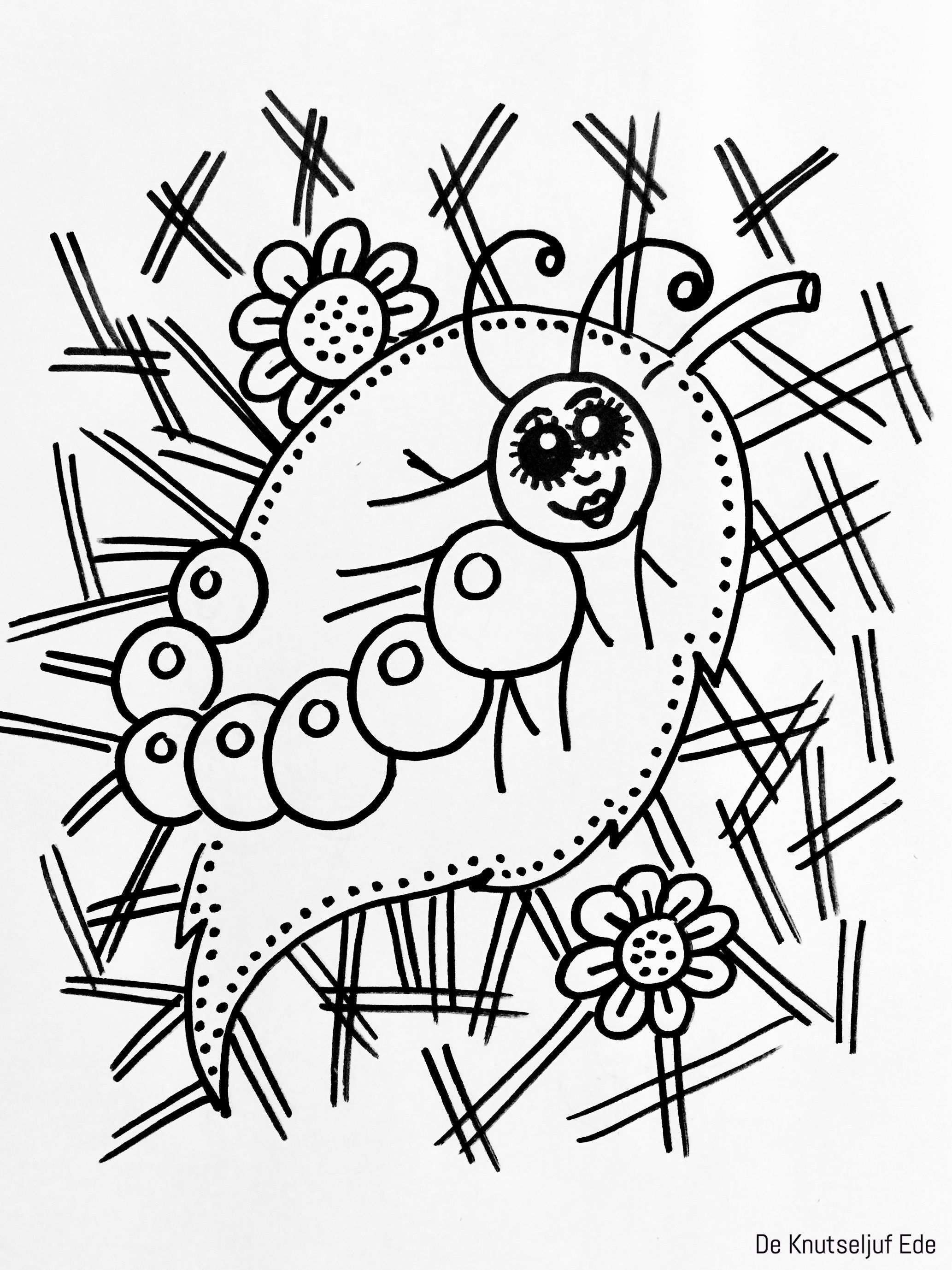 Van Eitje Tot Vlinder Kleurplaten Kleurplaat Kleurplaten