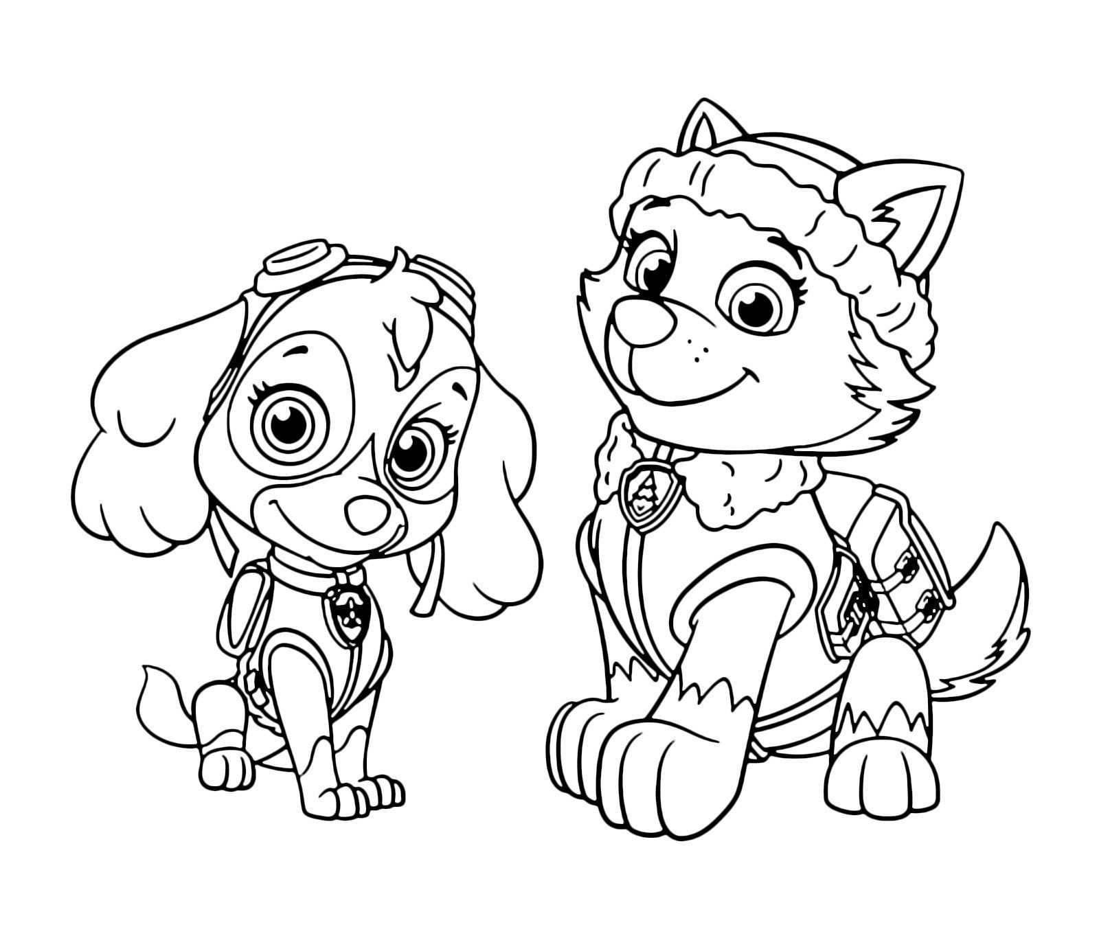 Zuma Coloring Pages New Paw Patrol Rocky Skye And Page Inside Free