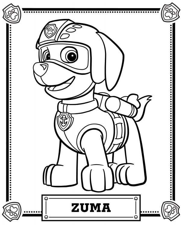 Paw Patrol Coloring Pages With Images Paw Patrol Coloring Paw