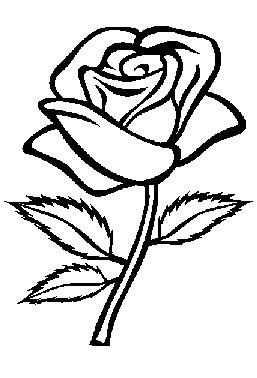 Kleurplaten Bloemen Roos Google Zoeken Rozen Tekening Bloemen