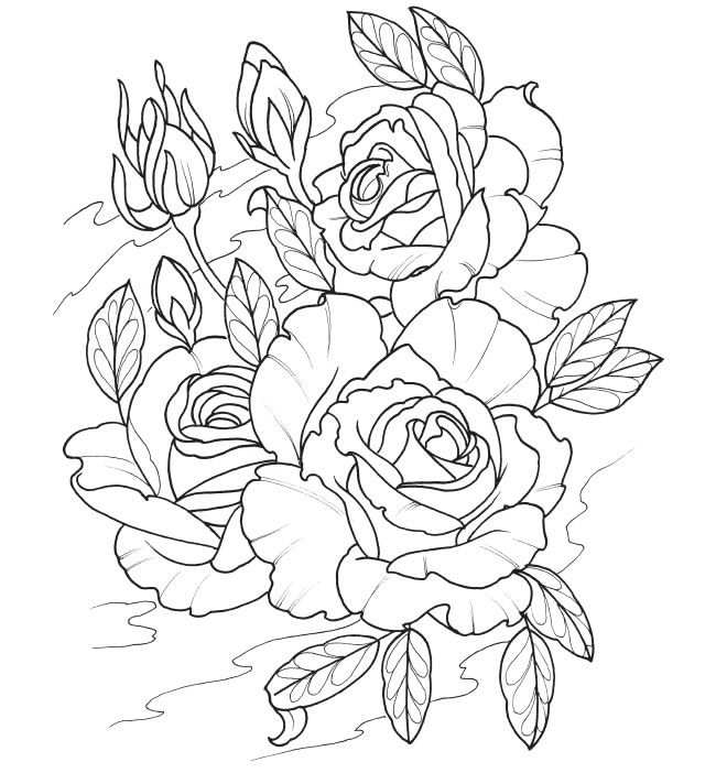 kleurplaat rozen