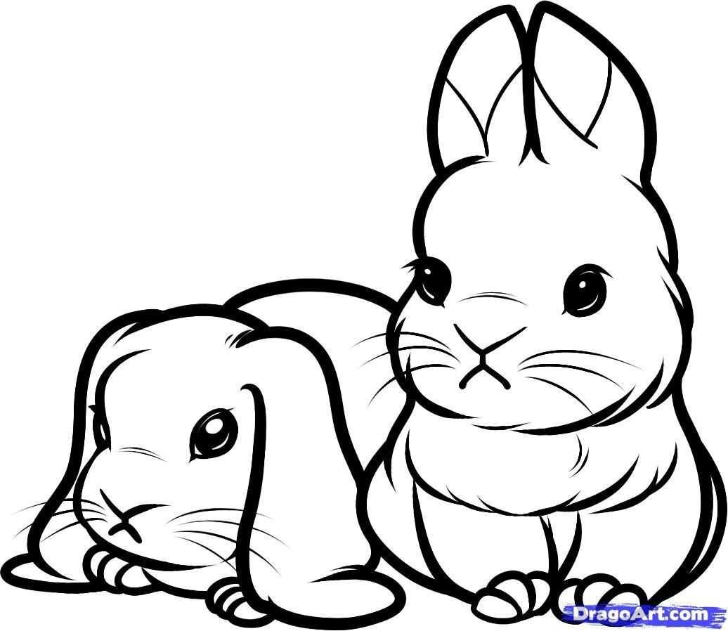 kleurplaat schattig konijntje