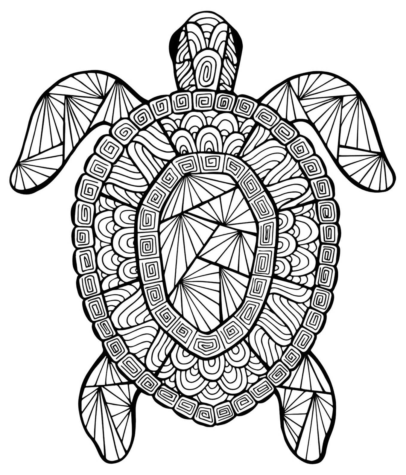 Incredible Turtle Turtles Coloring Pages For Adults Just Color