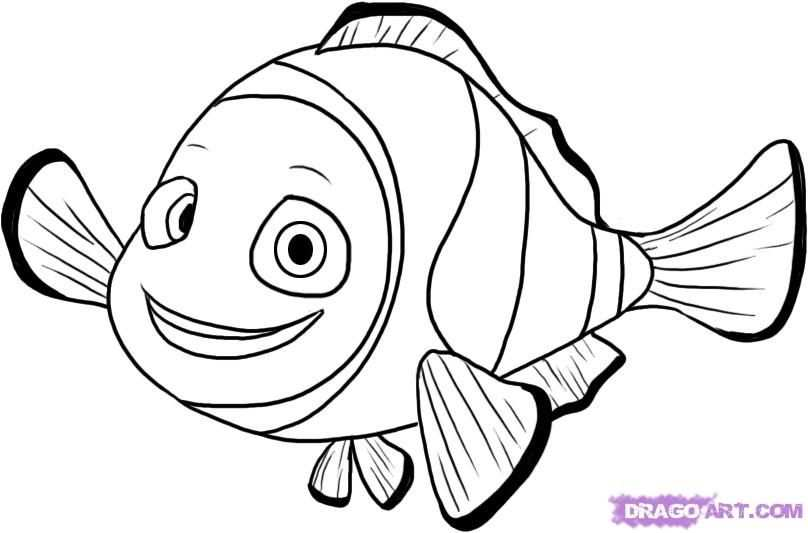How To Draw Nemo From Finding Nemo By Dawn Com Imagens