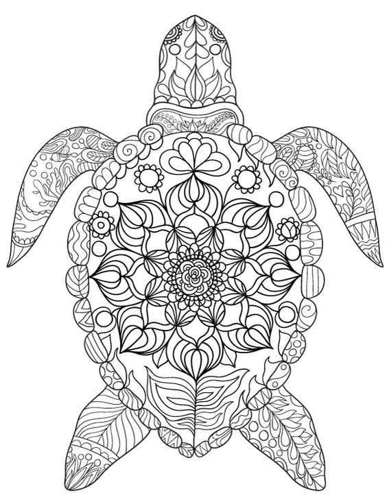 Epingle Par Barbara Sur Coloring Turtle Penguin Avec Images