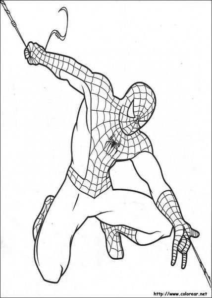 Dibujos De Spiderman Para Colorear En Colorear Net Warna Anak