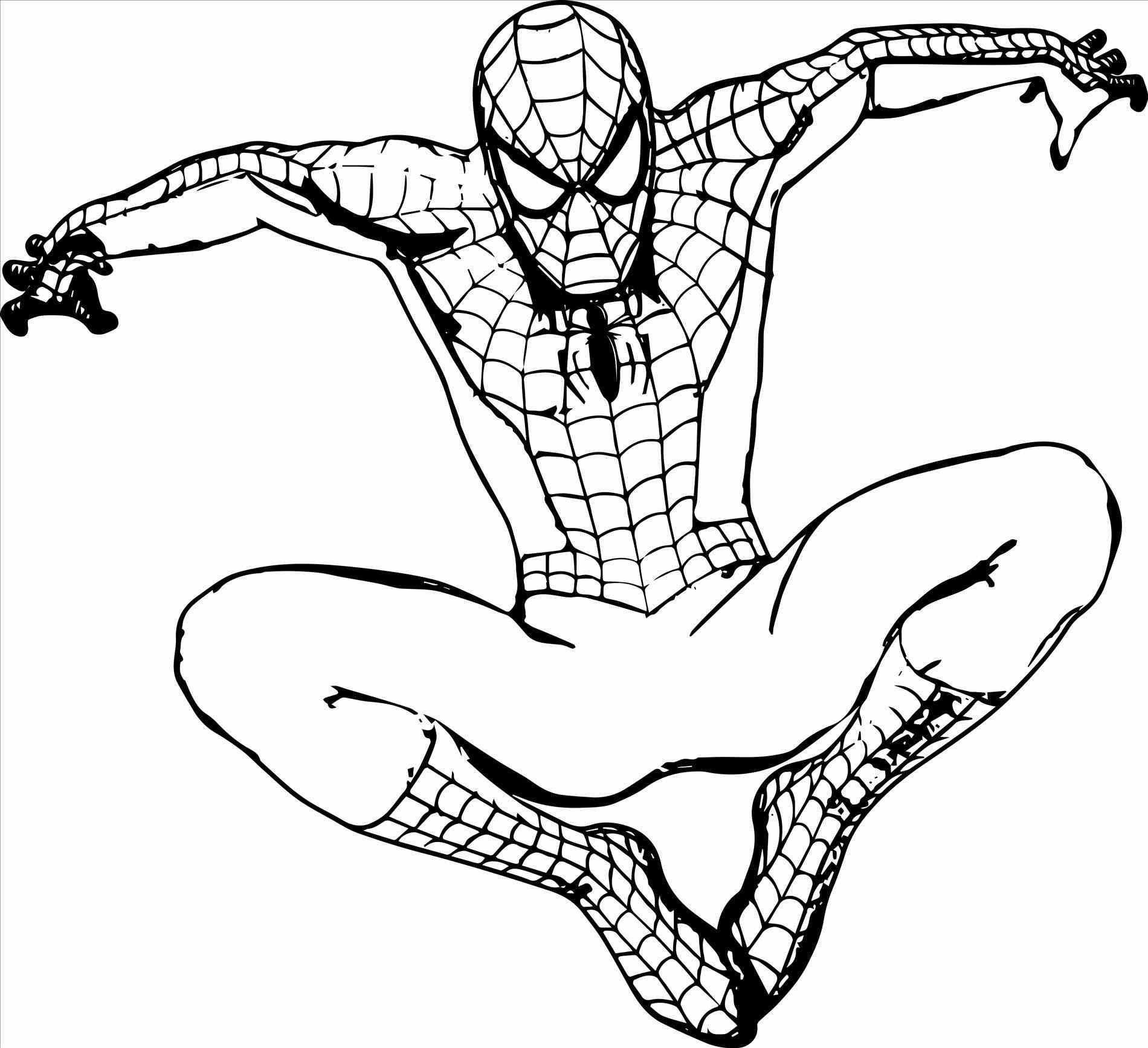 Easy Spiderman Pictures To Draw Free Printable Spiderman Coloring