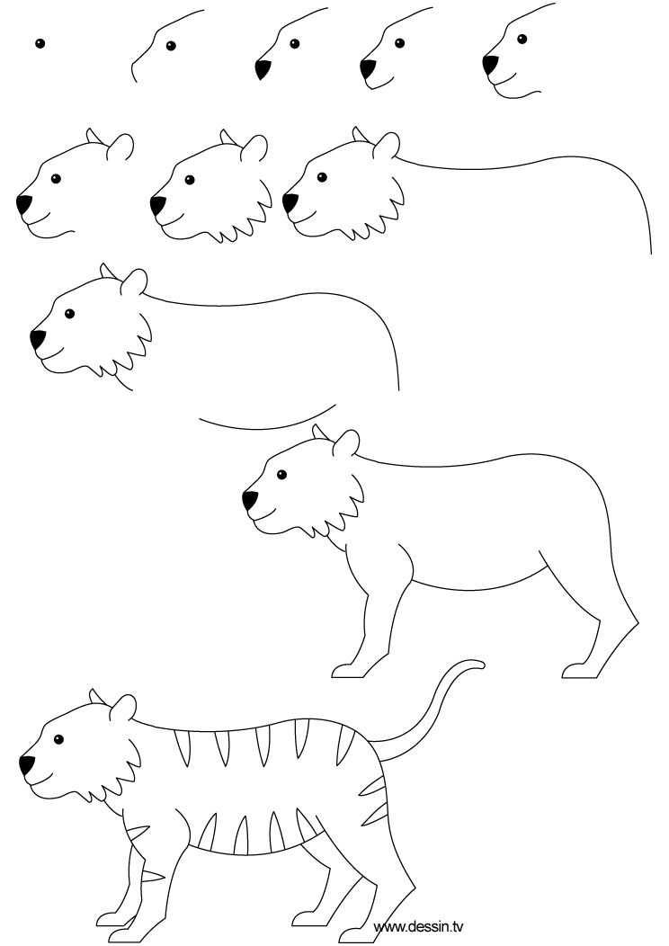 Tijger Tekenen Met Kleuters A Tiger Dessin Tigre Dessin