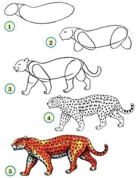Panter Tekenen Met Afbeeldingen Dieren Tekenen Tekenen Leer