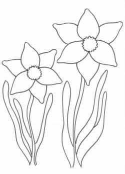 Voorjaarsknutsel Narcis Kleurplaten Knutselen Thema Lente