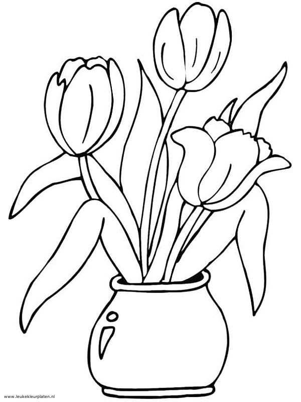 Pin By Danielle Forward On Art Kit In 2020 Tulip Drawing Flower