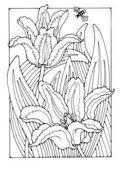 Kleurplaat Tulpen Con Imagenes Dibujos Dibujos Para Colorear