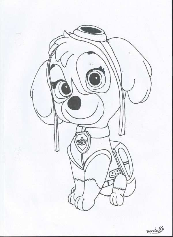 Coloring Pages Paw Patrol Paw Patrol Sky Coloring Page Paw