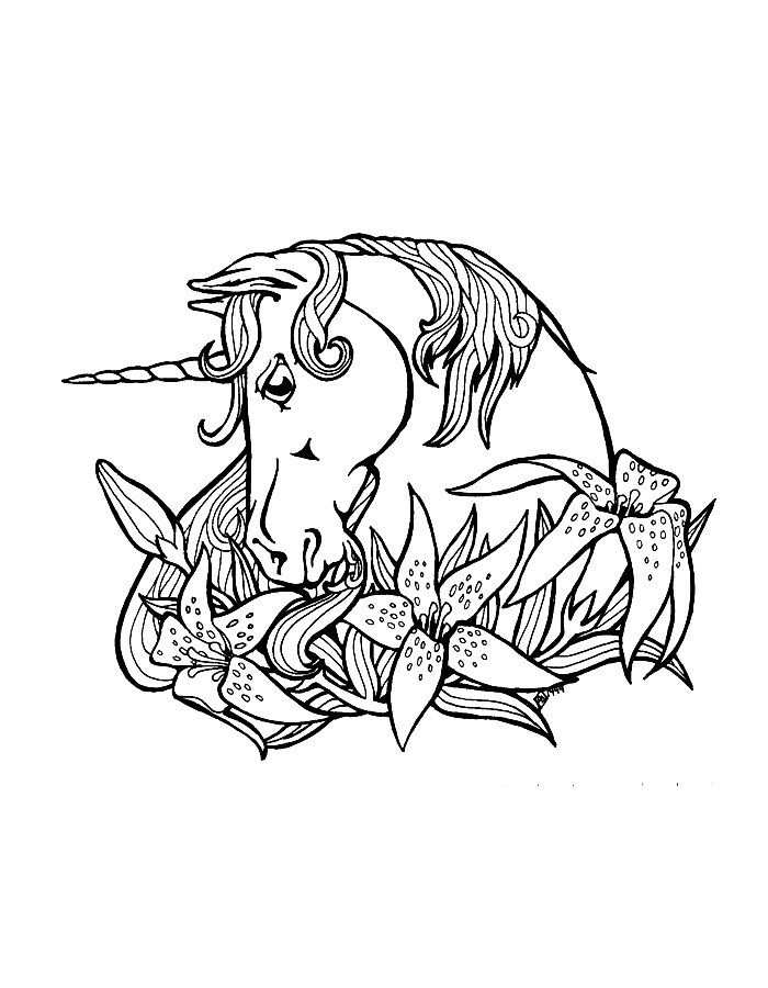 Unicorn Coloring Page For Adults Printable1 Jpg 2 500 3 300 Pixels