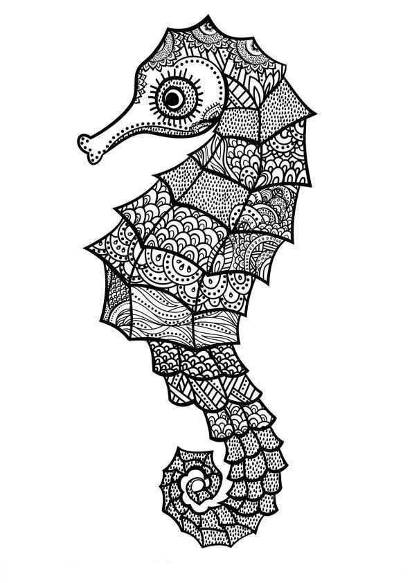 Zeepaardjes Kleurplaat Zentangle Drawings Mandala Drawing