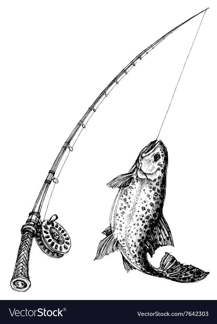 Fishing Rod And Fish Isolated Vector Image On Illustraties