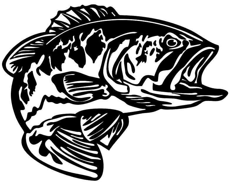 Bass Decal Md5 Vinyl Fishing Boat Sticker Goruntuler Ile