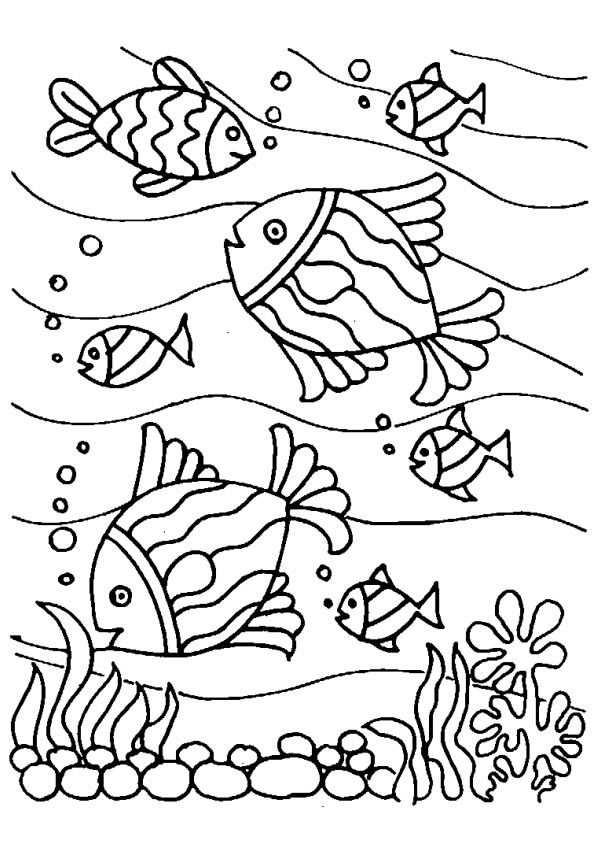 Fish Coloring Sheet Kleurplaat Vissen Zomer Kleurplaten