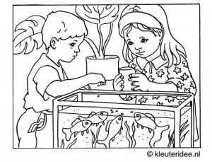 Kleurplaat Aquarium Kleuteridee Nl Dierenwinkel Huisdieren