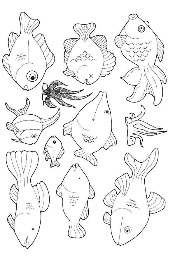 Pin By Edna Suggs On Fish Fish Coloring Page Animal Coloring Pages