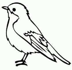 Vogel Malvorlagen Vogel Malvorlagen Kostenlos Ausdrucke