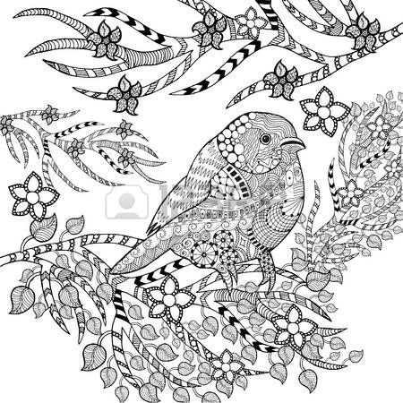 Zwart Wit Vogels Tropische Vogel Dieren Kleurplaten Dingen Om