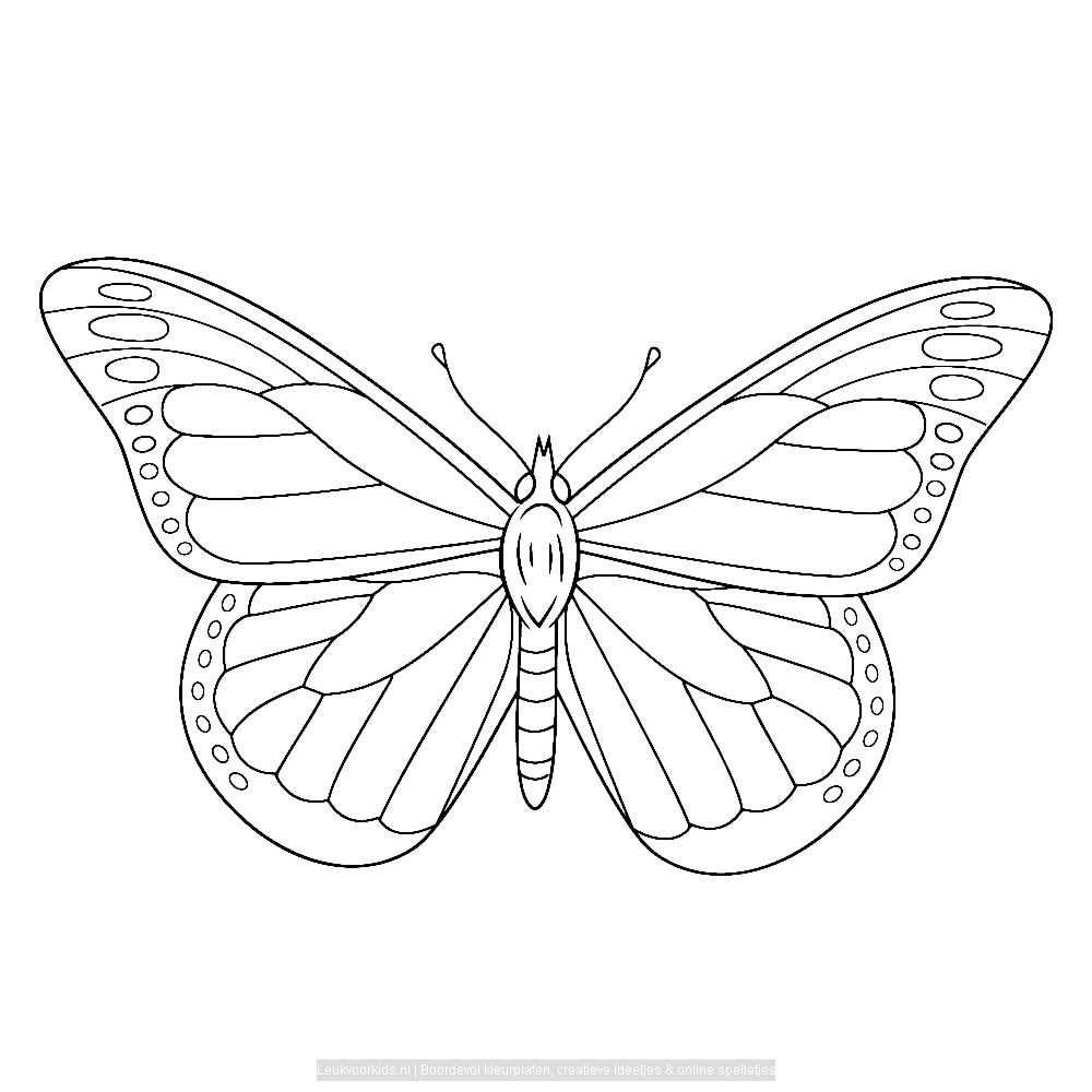 Vlinders 0031 Vlinder Tekening Vlinder Kunst Vlinders