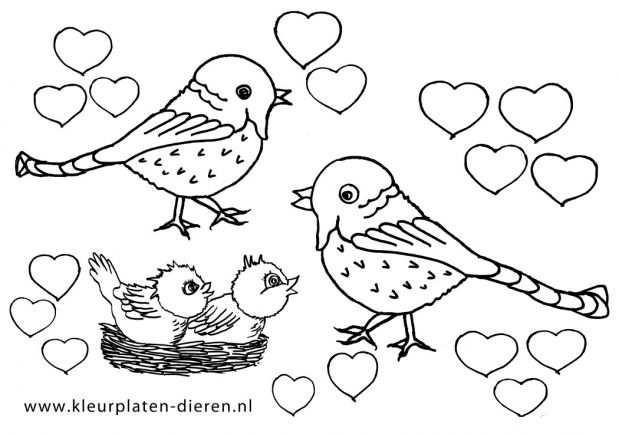 Hartjes Kleurplaat Vogels Met Afbeeldingen Kleurplaten Vogels