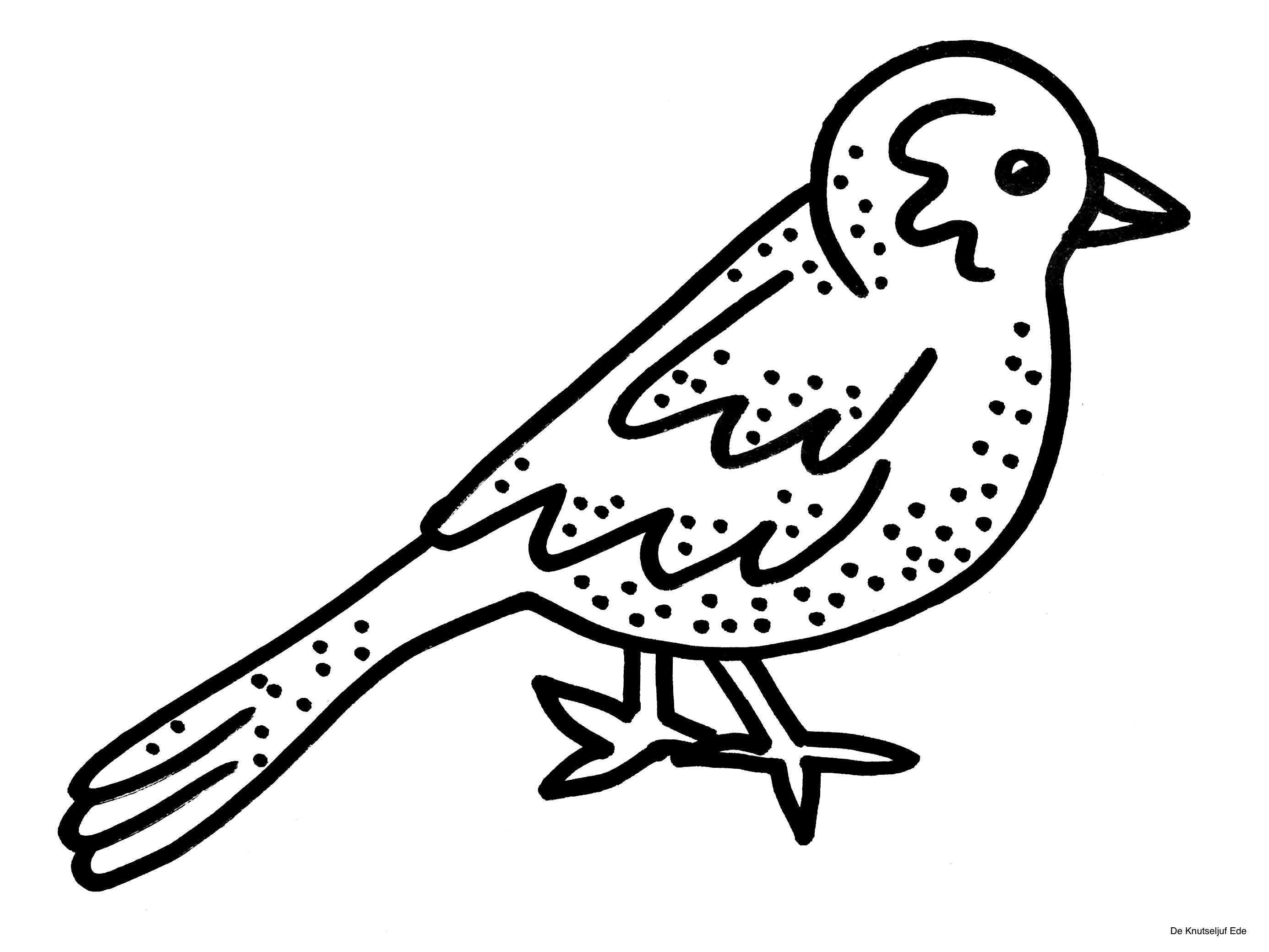 Kleurplaten Vogels Met Afbeeldingen Vogels Kleurplaten Vogeltjes