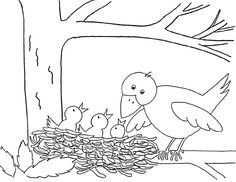 Vogelnest Tekening Google Zoeken Kleurplaten Vogels Tekenen