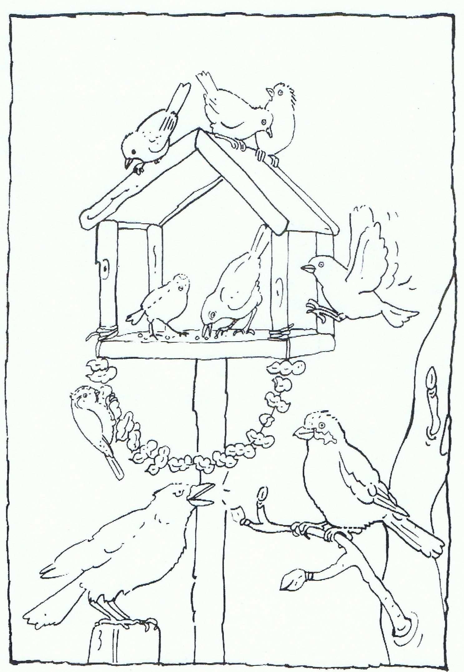 Feeding Birds In Your Garden Coloring Page Vogels Voeren In Je