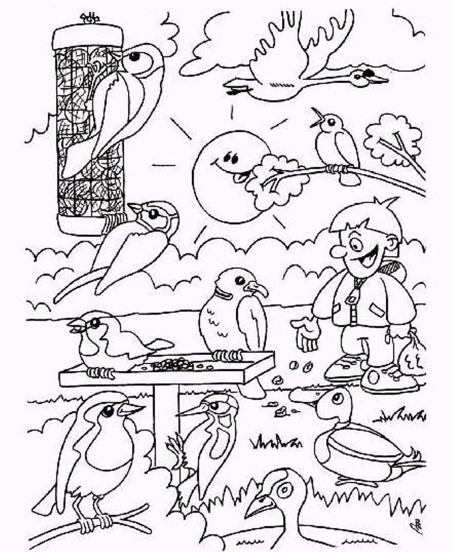 Diy Winter Kids Coloring Page Birds During Winter Time Winter