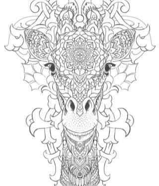 Coloring Africa Giraffe Zentangle Kleuren Voor Volwassenen