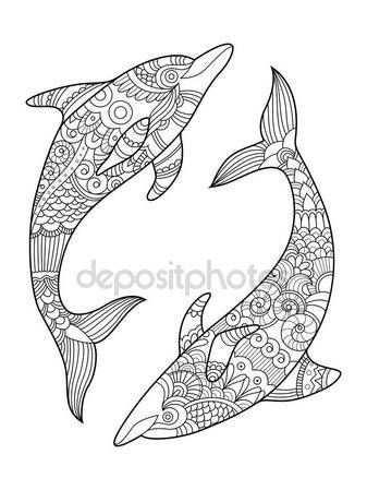 Dolfijn Kleurplaat Boek Voor Volwassenen Vector Stockvector