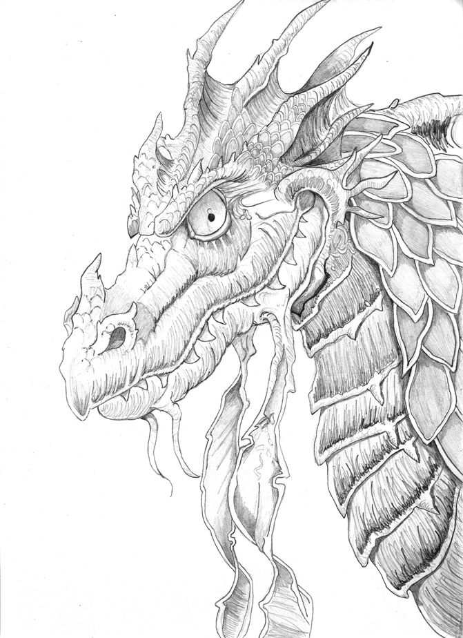 kleurplaat voor volwassenen draak