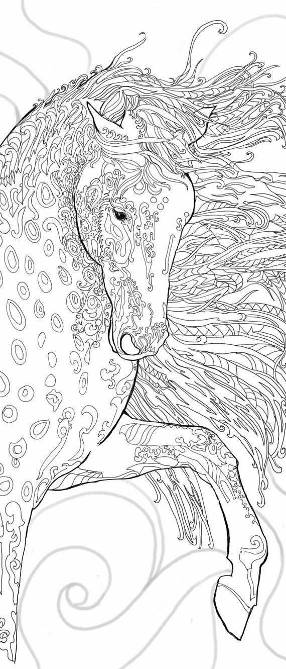 Pagina S Afdrukbare Volwassen Kleuren Kleurboek Paard Door Valrart