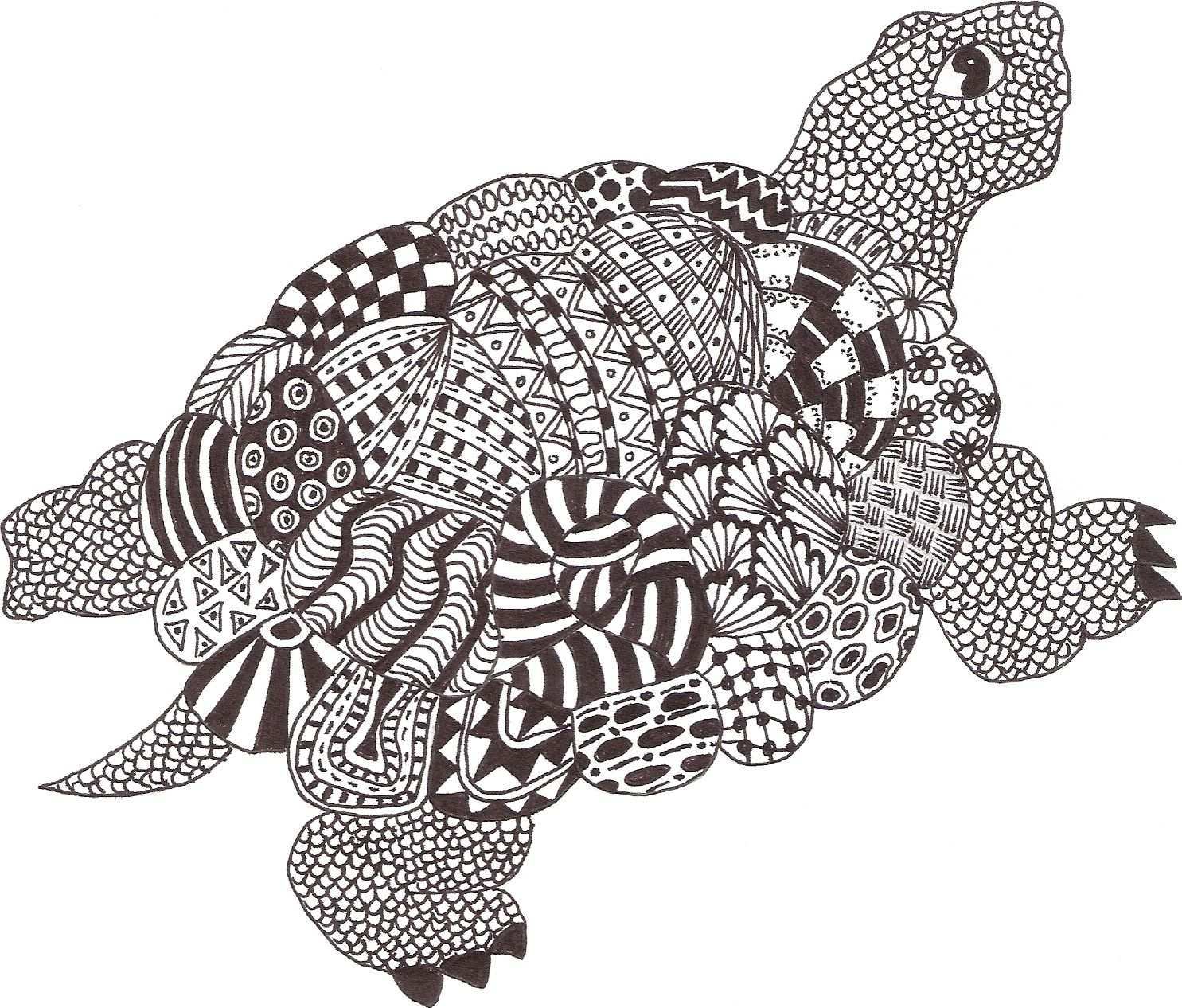 Zentangle Made By Mariska Den Boer 06 Dengan Gambar Kura Kura