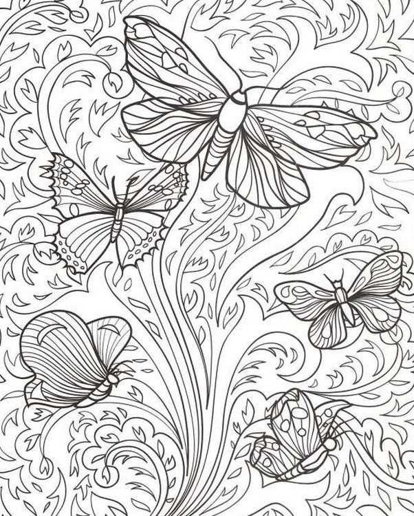Kleuren Voor Volwassenen Vlinders Met Afbeeldingen Abstracte