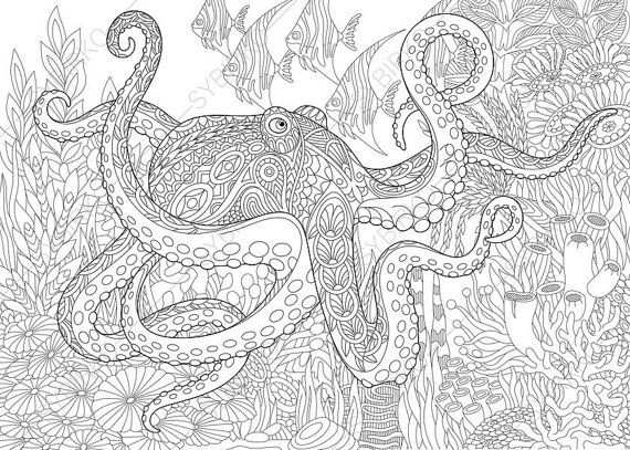 Coloring Pages For Adults Sea Octopus Adult Coloring Pages