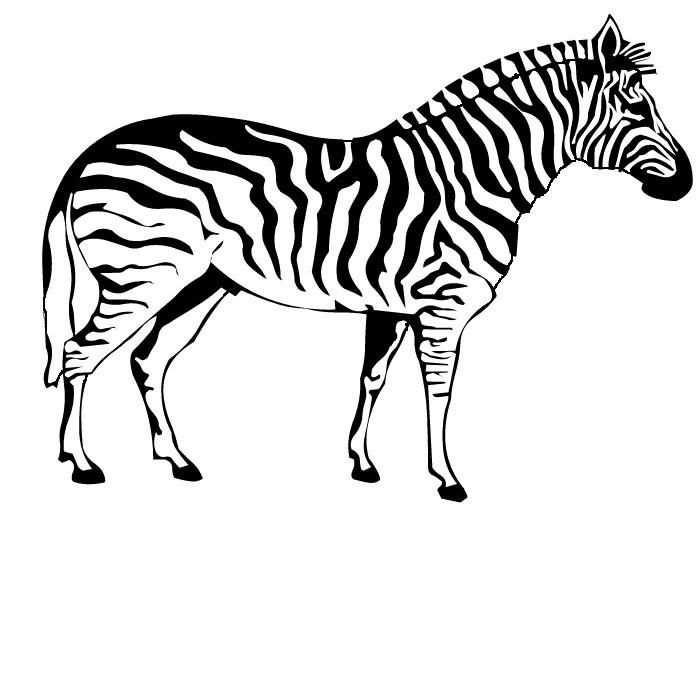 Malvorlage Malvorlage Zebra 7 Zebra Tekening Zebra S Dieren