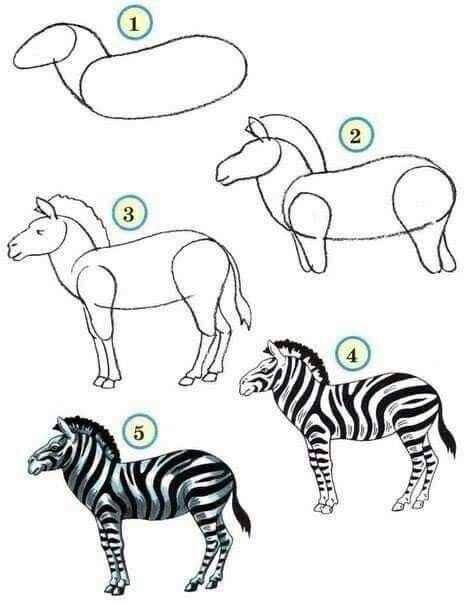 Zebra Tekenen Met Afbeeldingen Zebra Tekening Dieren Tekenen