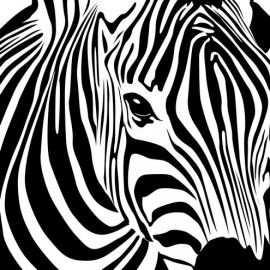 Zebra Kop Kunst Ideeen Canvasschilderijen Canvaskunst