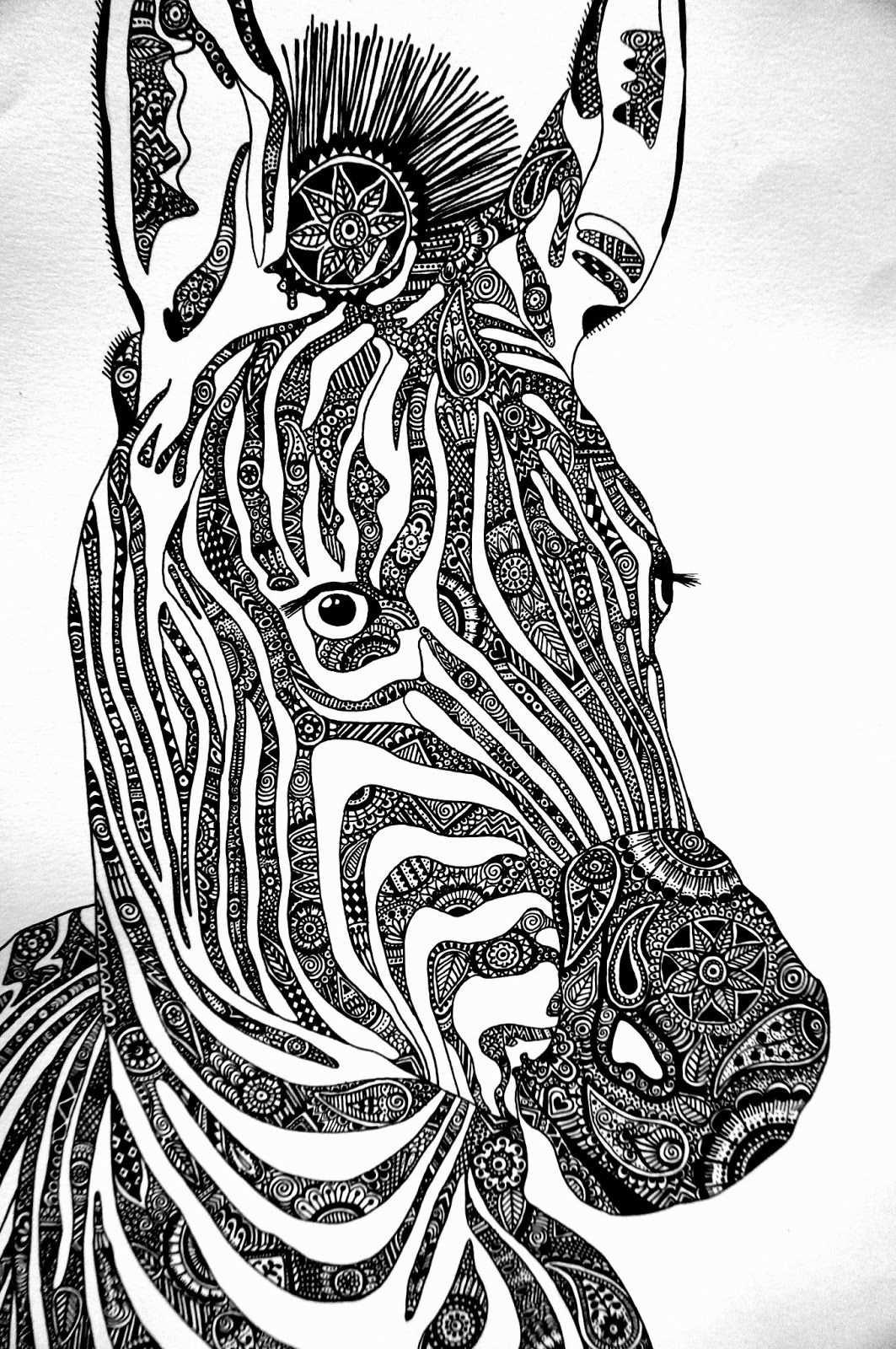 Twllllyat Met Afbeeldingen Zebra Tekening Dieren Patronen